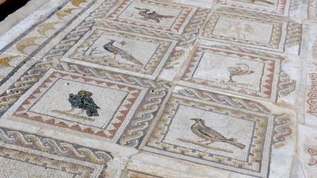 España, Andalucía, Itálica, mosaic, Casa de los Pájaros