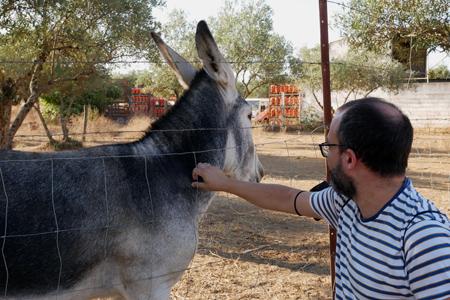 Spain, España, El Pedroso, train, hiking, Mirador de Alonso, donkey